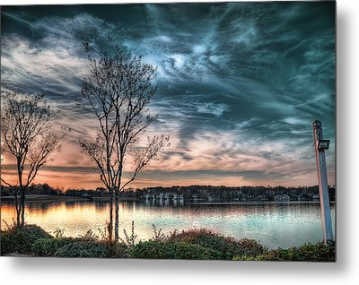 Sunset Over Canebrake Metal Print by Brenda Bryant