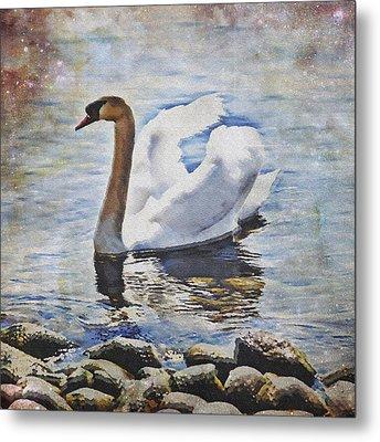 Swan Metal Print by Joana Kruse