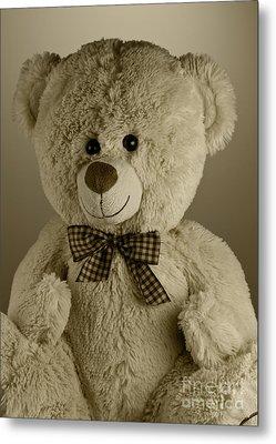Teddy Bear Metal Print by Blink Images