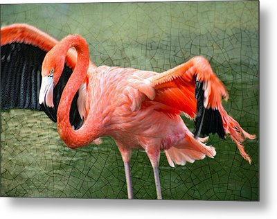 Metal Print featuring the photograph The Flamingo by Rosemary Aubut