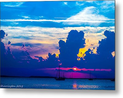 The Purple Sunset Metal Print by Shannon Harrington