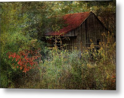 The Shed Metal Print by Dianna Hauf