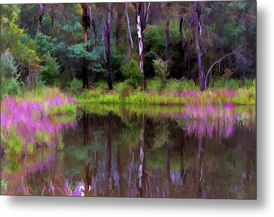 Tidbinbilla Reflections Metal Print