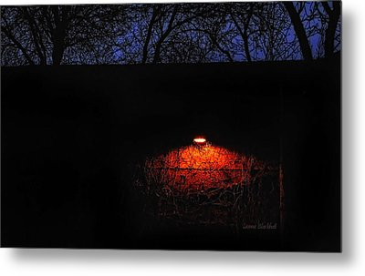 Watching Metal Print by Donna Blackhall