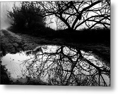 Metal Print featuring the photograph Water Mirror by Edgar Laureano