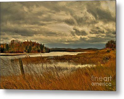 Waters Edge Metal Print by Alana Ranney