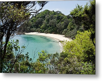 Whale Bay In New Zealand Metal Print