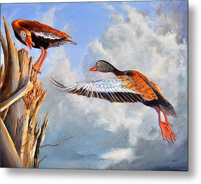 What Are You Whistling At Metal Print by AnnaJo Vahle