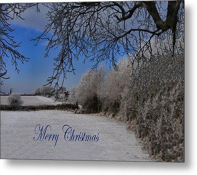 Winter Wonderland Metal Print by Debra Collins