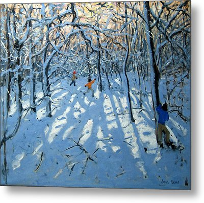 Winter Woodland Near Newhaven Derbyshire Metal Print by Andrew Macara