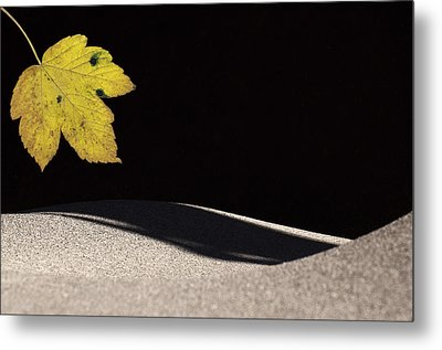 Yellow Leaf Metal Print by Michael Mogensen