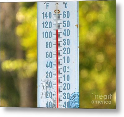 110 Degrees In The Shade Metal Print by Al Powell Photography USA