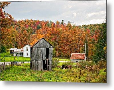 Autumn Farm Metal Print by Steve Harrington
