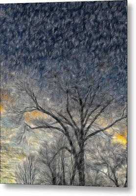 Bare Limbs Metal Print by Misty Blankenship