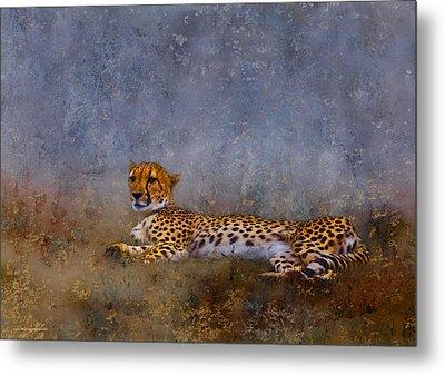 Cheetah Metal Print by Ron Jones