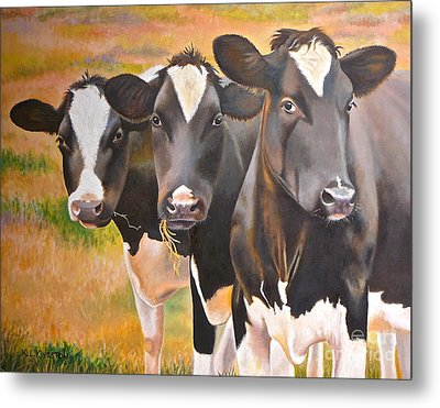 Curious Trio Metal Print by K L Kingston