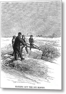 Cutting Ice, C1870 Metal Print by Granger