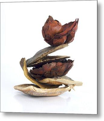 Dried Pieces Of Vegetables.  Metal Print by Bernard Jaubert