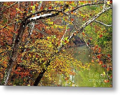 Fall Along West Fork River Metal Print by Thomas R Fletcher