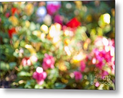 Flower Garden In Sunshine Metal Print