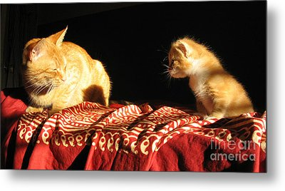 Foxy And Cutters Metal Print by Barbara Marcus