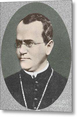 Gregor Mendel, Father Of Genetics Metal Print by Science Source