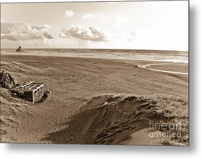 Karekare Beach In New Zealand Metal Print