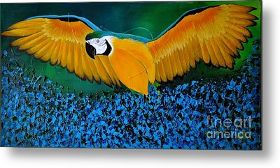 Macaw On The Rise Metal Print