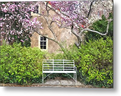 Magnolia Garden Metal Print by Andrew Dinh