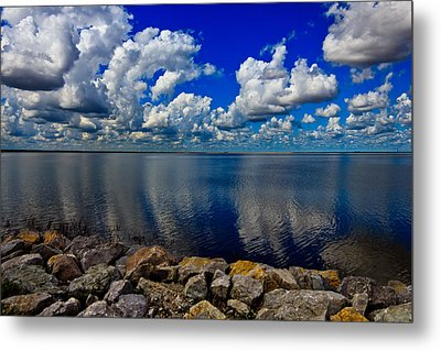 Mother Natures Beauty Metal Print by Doug Long