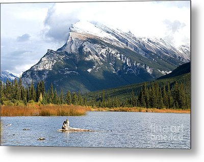 Mt Rundle Banff National Park Metal Print by Bob and Nancy Kendrick