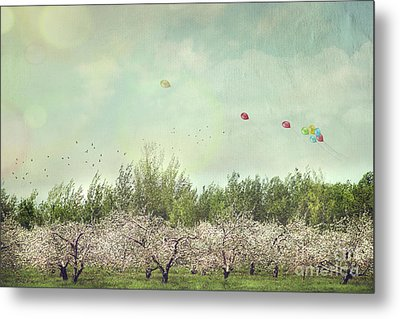 Orchard Of Apple Blossoming Tees Metal Print by Sandra Cunningham