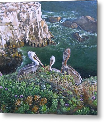 Pelican Point Metal Print by Lorna Saiki