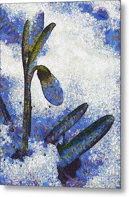 Snowdrop Metal Print by Odon Czintos