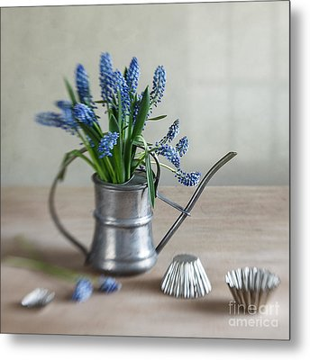 Still Life With Grape Hyacinths Metal Print by Nailia Schwarz