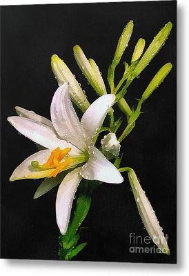 The Lily Metal Print by Odon Czintos