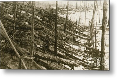 Tunguska Event, 1908 Metal Print by Science Source