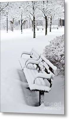 Winter Park Metal Print by Elena Elisseeva