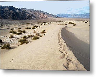 Death Valley National Park Mesquite Flat Sand Dunes Metal Print by Eva Kaufman