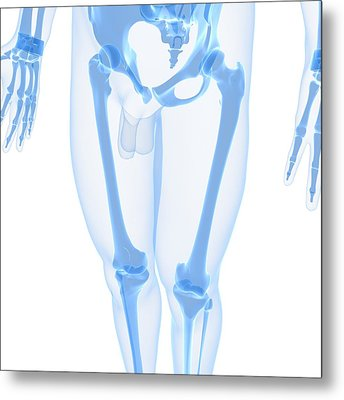 Leg Bones, Artwork Metal Print by Sciepro