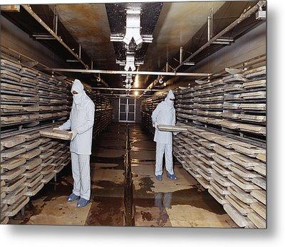 Microbe Fermentation Unit Metal Print by Volker Steger