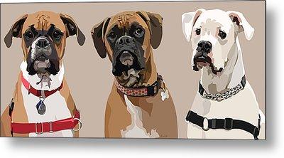 Three Boxers Metal Print by Kris Hackleman