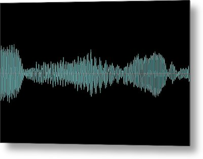 Whale Song Metal Print by
