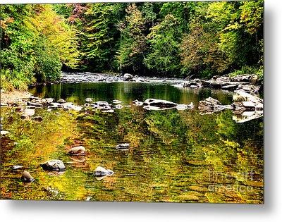 Williams River Autumn Metal Print by Thomas R Fletcher