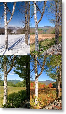 4 Seasons Chocurua Vertical Metal Print