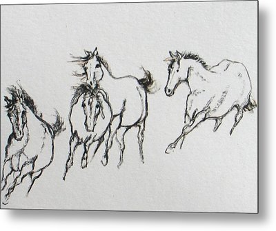 4 Wild Horses  Metal Print