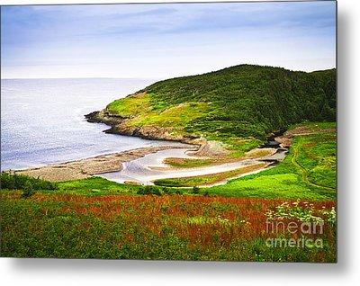 Atlantic Coast In Newfoundland Metal Print by Elena Elisseeva