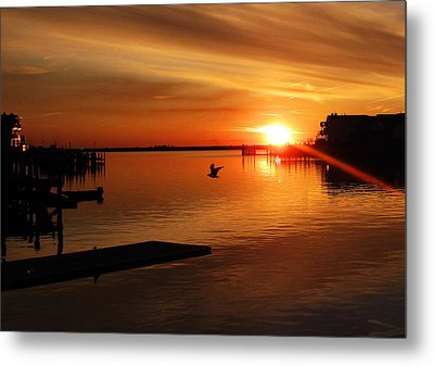 Bay Sunset Metal Print by Mary McCusker