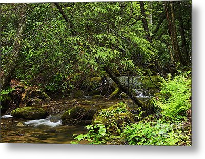 Rushing Mountain Stream Metal Print by Thomas R Fletcher