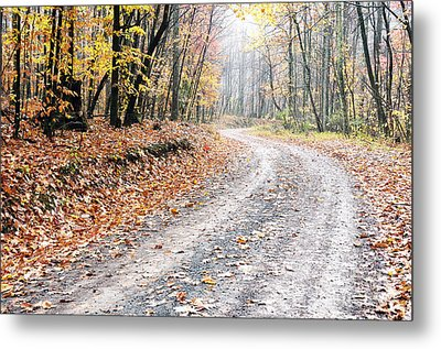 Autumn Monongahela National Forest Metal Print by Thomas R Fletcher